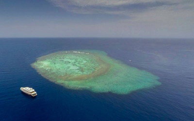 Best Liveaboards Red Sea