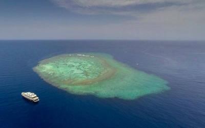 Best Liveaboards Red Sea
