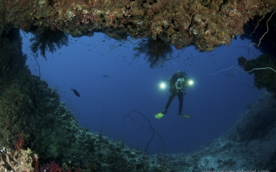 Underwater photographie in Sudan