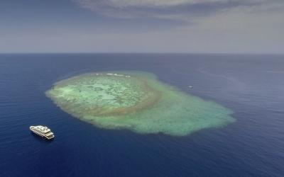 Suba diving safari onboard Andromeda in Sudan
