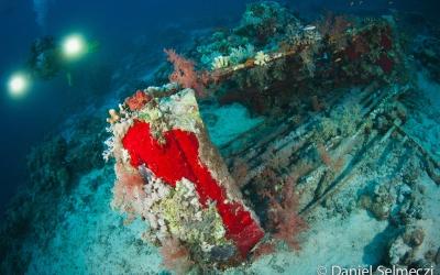Cousteau Precontinent