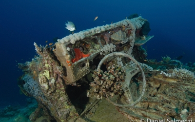 Red Sea wreck Toyota