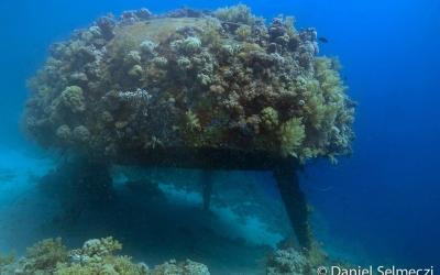 Cousteau Precontinent wreck Sudan