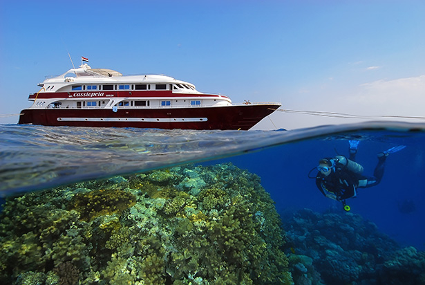 Red Sea scuba diving holiday