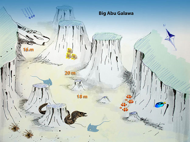Big Abu Galawa - Red Sea