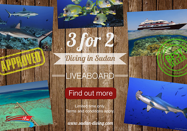 Special promotion onboard Andromeda in Sudan!