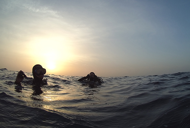Scuba diving in Sudan