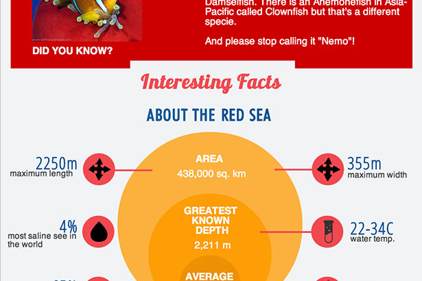 Interesting facts of the Red Sea