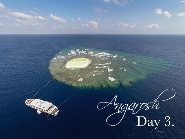 Angarosh reef sudan