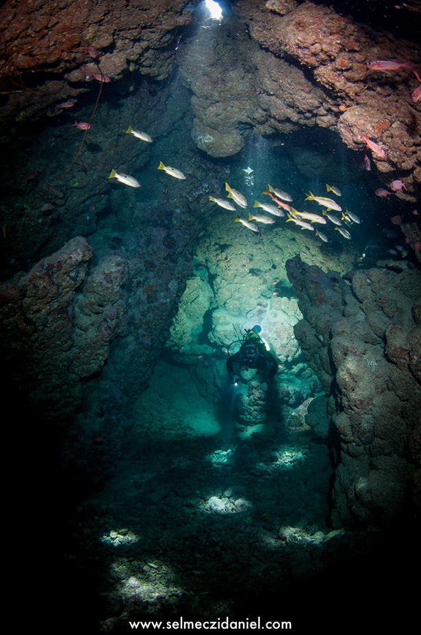 Claudia reef cave diving at Fury Shoal