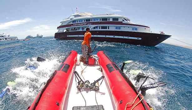 Life-saving beacon for every diver!