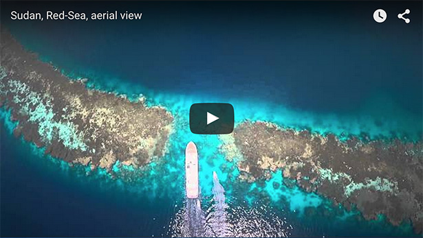 Sudan underwater video