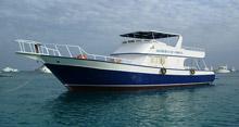 Liliom boat red sea