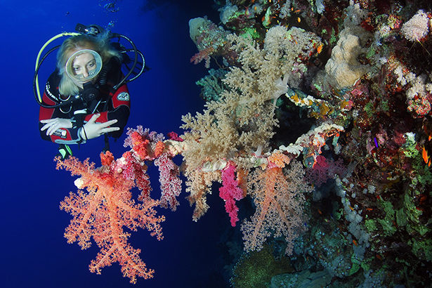 Prepared scuba diver