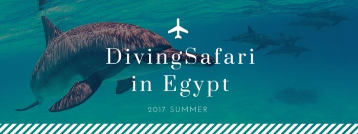 scuba diving holiday in Egypt Red Sea