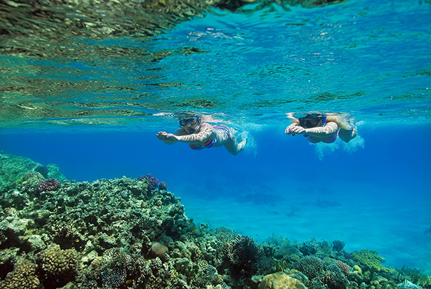 Family Holiday in the Red Sea