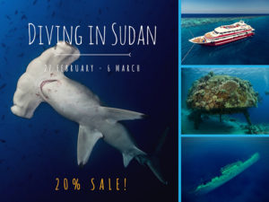 Scuba diving liveaboard in Sudan